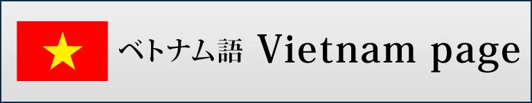 ベトナム版